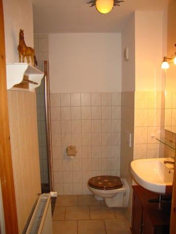 Blick ins Bad mit ebenerdiger Dusche