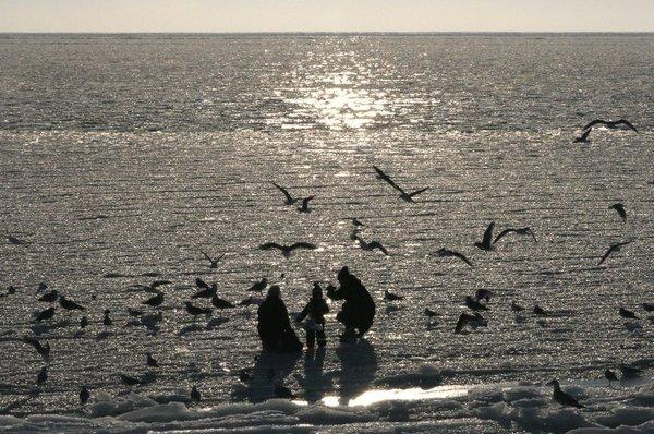 die zugefrorene Ostsee im 7 km entfernten Sassnitz
