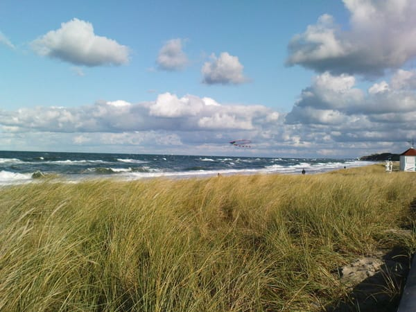 Strand im Frühjahr