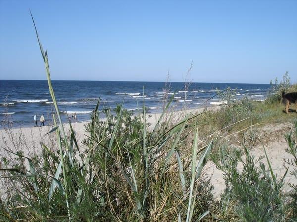 Rundweg Ostsee .- Achterwasser - Ostsee
