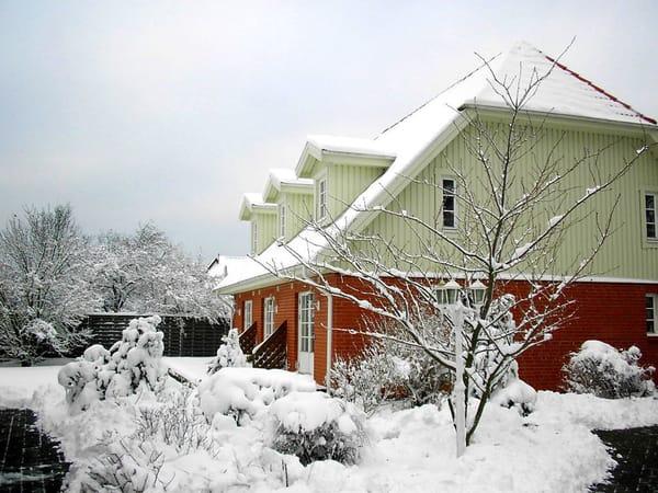 Ferienhaus Residenz zu den 3 Tannen Zingst - auch im Winter wenn es ruhig ist kann es in Zingst sehr schön sein