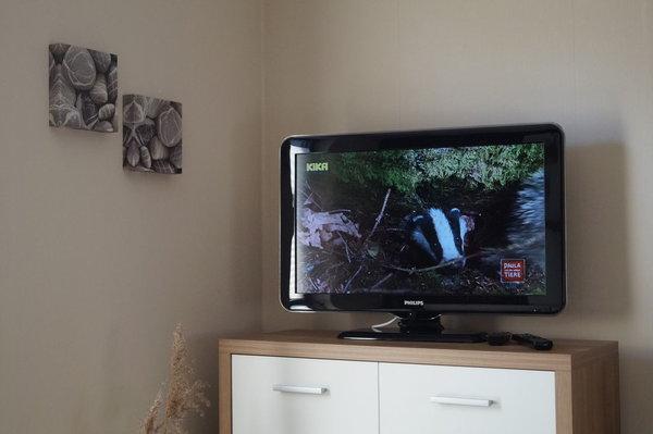 und LCD-Fernseher