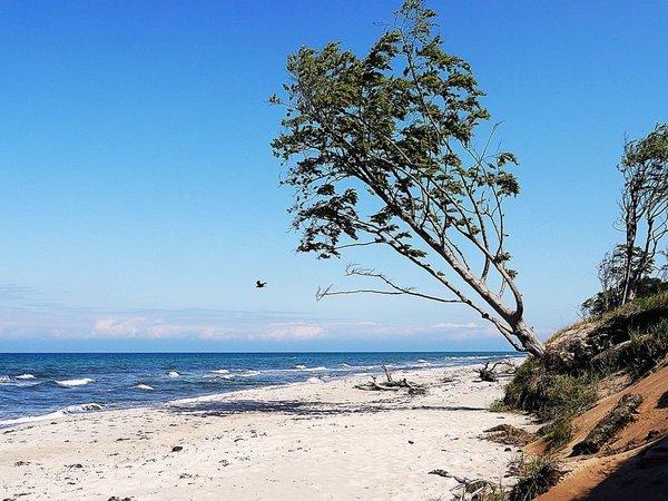 Lohnenswert- ein Ausflug an den Weststrand
