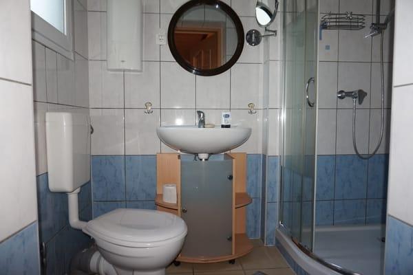 Das Bad mit Dusche und WC im Erdgeschoss.