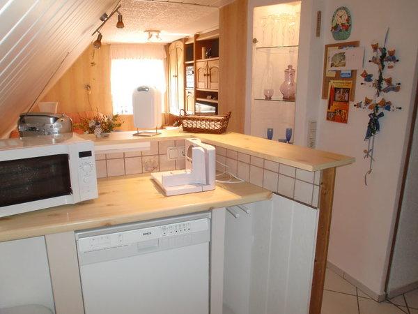 Küche mit Geschirrspüler und Mikrowelle