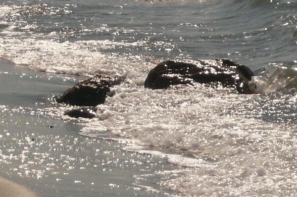 Wellenspiel