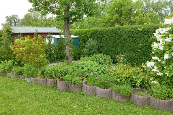 Garten mit laube und Fahrradabstellhaus