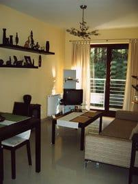 Wohnzimmer (Schlafcouch siehe anderes Bild)
