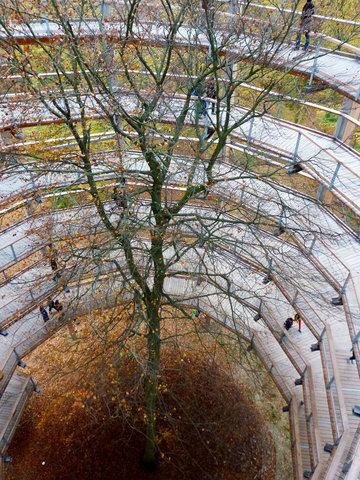 Weg auf das Naturerbezentrum- Rügen (Ortsrand Binz)