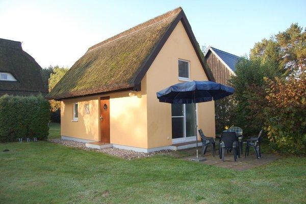 Außenansicht mit Terrasse und Freifläche