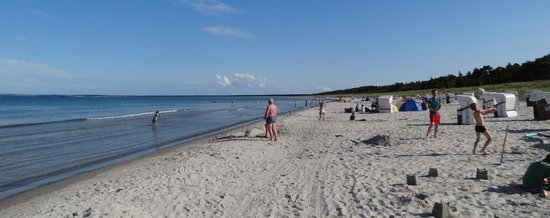 Am Sandstrand in der Schaabe