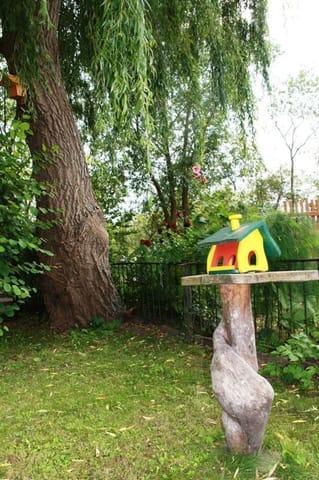Der Garten im Haus Schwanenwinkel mit einer Ferienwohnung für die Vögel...