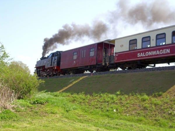 """Traditionsbahn """"Molli""""  (hier auf freier Strecke zwischen Bad Doberan und Ostseebad Kühlungsborn))"""