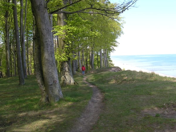Wanderung am Streckelsberg Koserow
