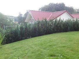 umzäuntes Grundstück