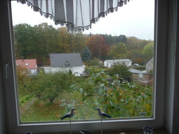 Herbst, sind aber die Blätter ab, sieht man die Ostsee, 500 m ab.
