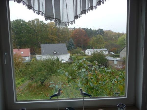 Herbst, sind aber die Blätter ab, sieht man die Ostsee, 500 m weit  ab.