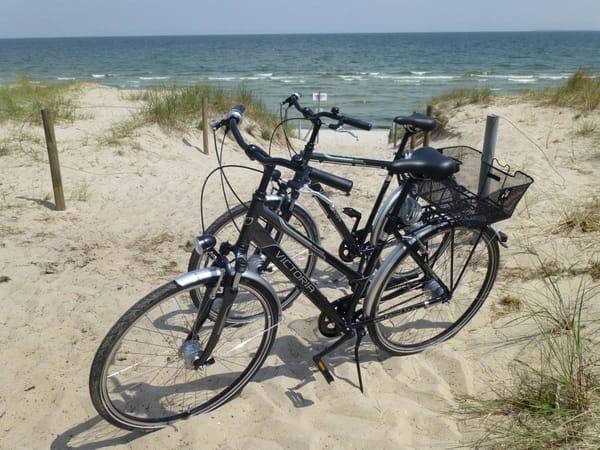 Hochwertige Fahrräder gehören mit zur Ausstattung