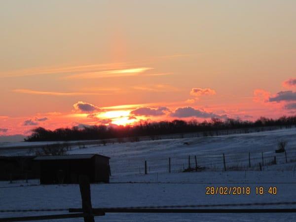 Winterlicher Sonnenuntergang gegenüber auf den Koppeln