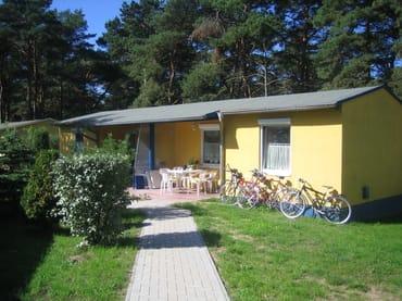 Bild: Ferienbungalow Kiefernweg im Dünenwald