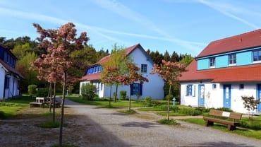 Bild: Insel Rügen; schicke Fewo mit Terrasse strandnah