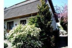 """Bild: Ferienhaus """" Sommerlust """""""