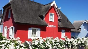Bild: Ferienhaus Seestern