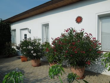 Bild: Gartenhaus