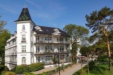 Bild: Pusteblume in der Villa Stranddistel