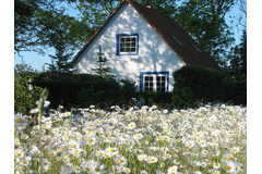 Bild: 2 FeWo. im Haus Wetterfrosch, großes Grundstück