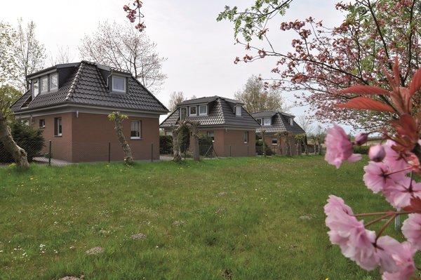 Bild: Ferienhaus an der Ostsee