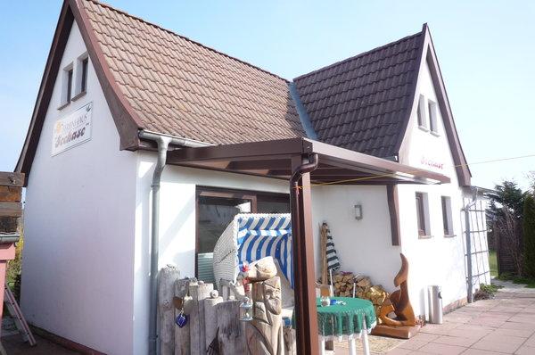 Bild: Feha Seehase am Strand v. Nienhagen/PKW-St. gratis