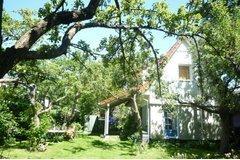 Bild: Sommerhaus am Bach/PKW-St. gratis