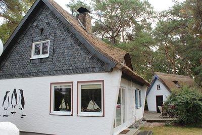 Bild: Haus Pinguin