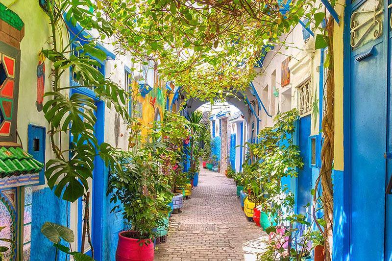 Garden in Tangier, Morocco