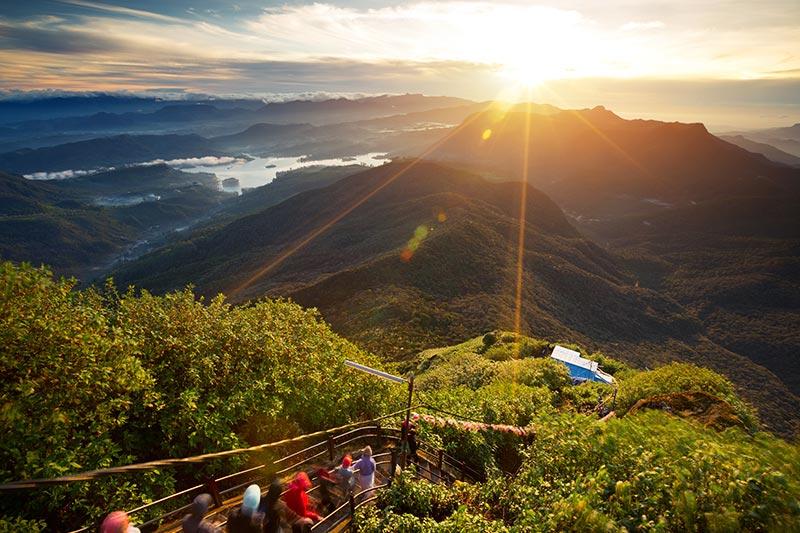 Tea Valley, Sri Lanka