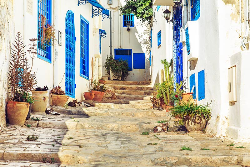 Houses of Tunisia
