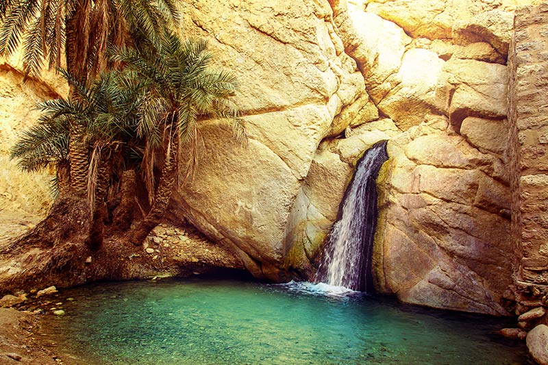 Nature in Tunasia
