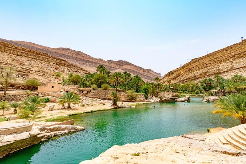 Oman Oasis