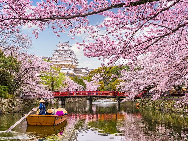 Bridge in Japan