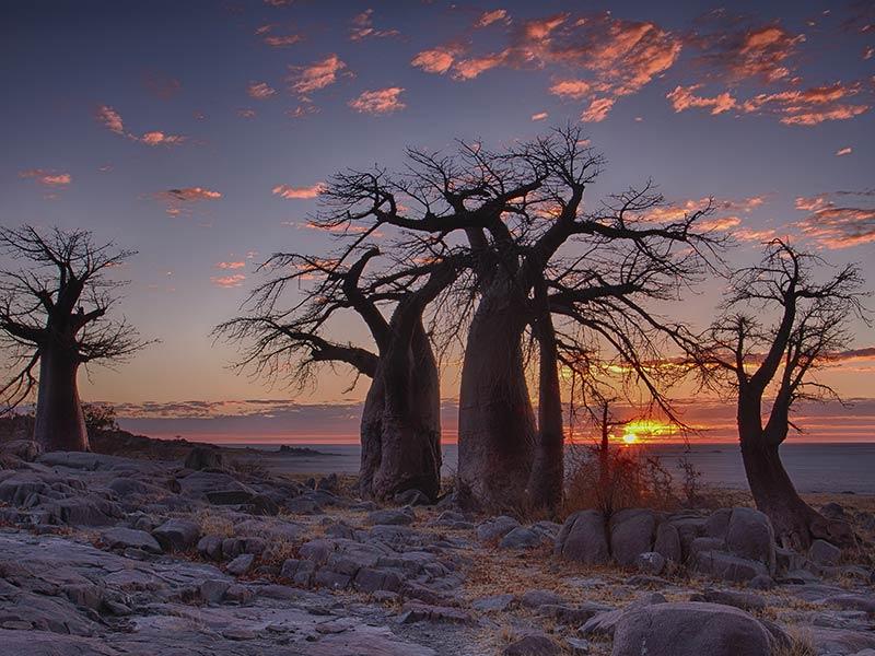 Sundown in Botswana