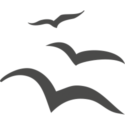 logo i gabbiani
