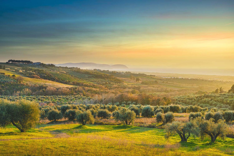 Panorama campagna e mare a San Vincenzo