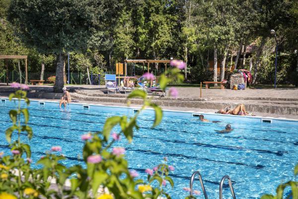 Famiglie in piscina al campeggio di Montescudaio