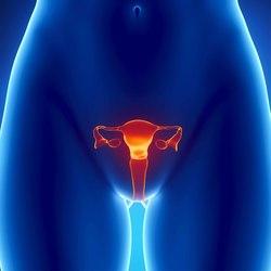 Mancanza di mestruazioni