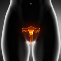 Anormale sanguinamento vaginale