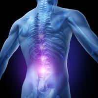 Dolore alla schiena | Pazienti.it