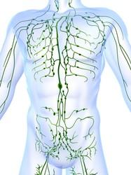 Gonfiore dei linfonodi (infiammazione ghiandole linfatiche)