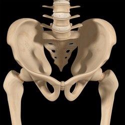 I traumi dell'articolazione ileo-sacrale nella pratica dello sci