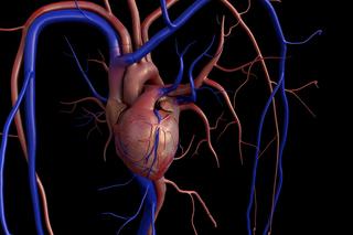 Difetti cardiaci congeniti